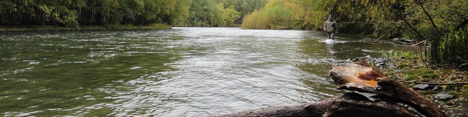 камчатка рыбалка видео